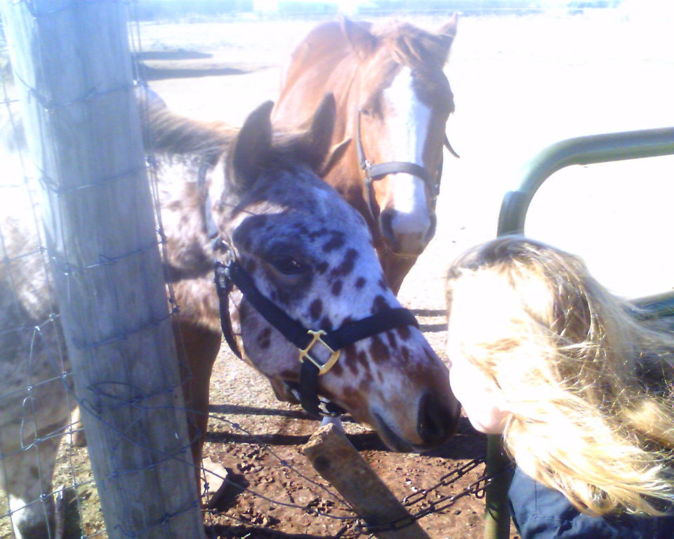 My friends Horse.. and it's baby<br/><b>Community Photo By:</b> Joe Deviney<br/><b>Submitted By:</b> Tama, Midwest