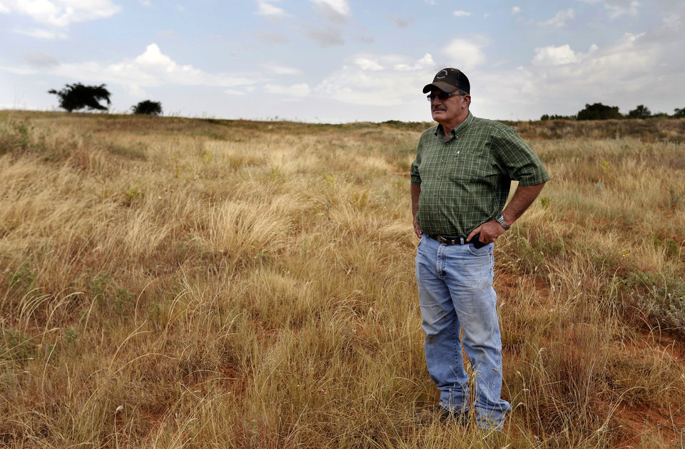 Fred Reuter stands in dry pasture Thursday, Aug. 16, 2012, at his farm in El Reno. Photo by Sarah Phipps, The Oklahoman <strong>SARAH PHIPPS</strong>