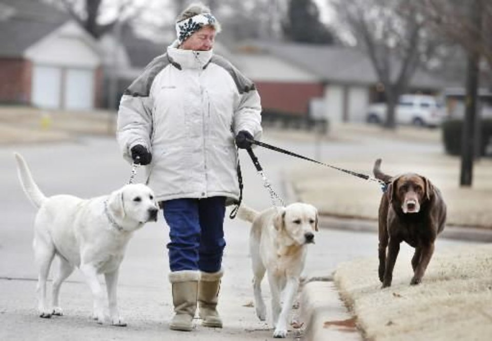 Photo - Sandra Peters takes her dogs for a walk in Yukon today. Photo by Steve Gooch