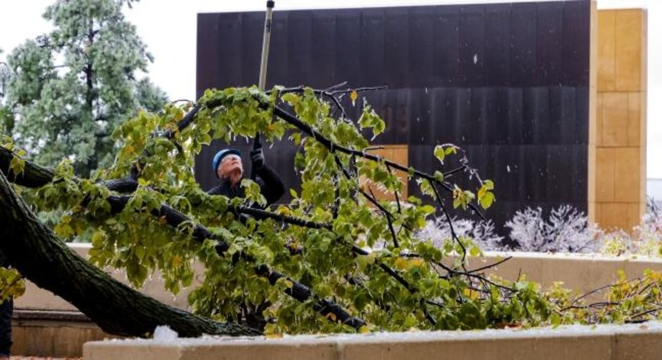 Photo -  One major branch from the Surivor Tree came crashing down Tuesday as ice covered the Oklahoma City National Memorial on Tuesday. [CHRIS LANDSBERGER/THE OKLAHOMAN]