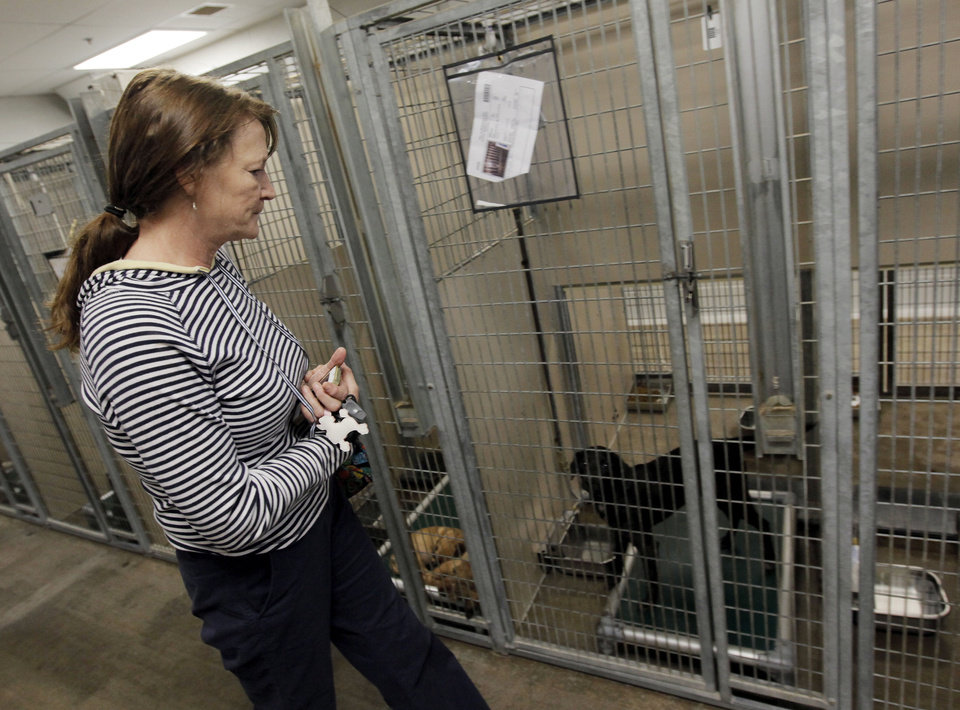 Photo - Jane Ward checks kennels for her daughter's lost dog, Crash, at the Oklahoma City Animal Shelter this month. Ward found Crash at the shelter.  NATE BILLINGS - The Oklahoman