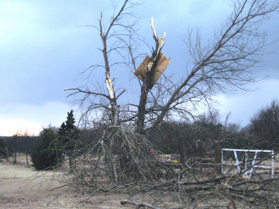 Photo - TORNADO / STORM DAMAGE: Debris landed in this tree in Kanaly's North Country addition west of Mitch Park. PHOTO BY JOHN A. WILLIAMS, THE OKLAHOMAN    ORG XMIT: 0902111549209520