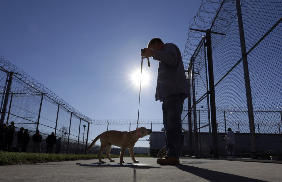 In this Nov. 26, 2012 photo, inmate John Barba works with Dill, a veteran assistance dog in training, at Western Correctional Institution in Cresaptown, Md. Dill is one of three dogs assigned since September to inmates at the maximum-security prison for basic training as service dogs for disabled military veterans. The inmates, who are also veterans, are among the state's first prisoners to join a national trend of training service dogs in correctional institutions. Professional trainers say prison-raised dogs tend to graduate sooner and at higher rates than those raised traditionally in foster homes because puppies respond well to the consistency and rigid schedules of prison life. (AP Photo/Patrick Semansky)