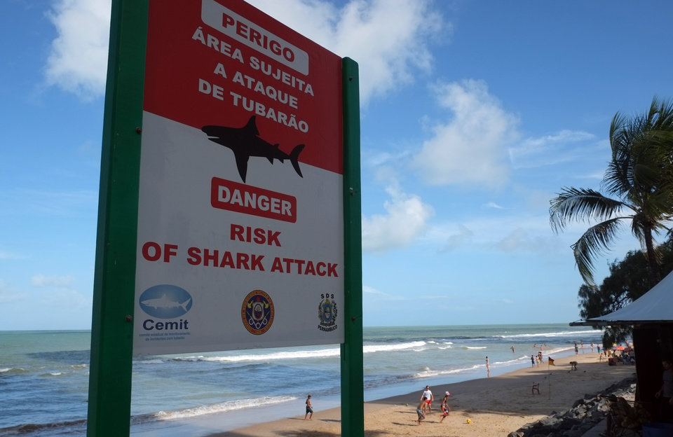 Photo - In this June 15, 2014, photo, a sign warns of the danger sharks pose to swimmers at Boa Viagem beach in Recife, Brazil. The beach, which has seen an influx in visitors during the World Cup, has had more reported shark attacks than any other beach in Brazil. According to the state's Shark Incident Monitoring Committee, 59 people have been attacked by sharks in or near Recife since 1992. Some tourists' eyes widen as they notice the shark symbol while approach the huts to order Brazilian cocktails. (AP Photo/Lawrence Rincon)