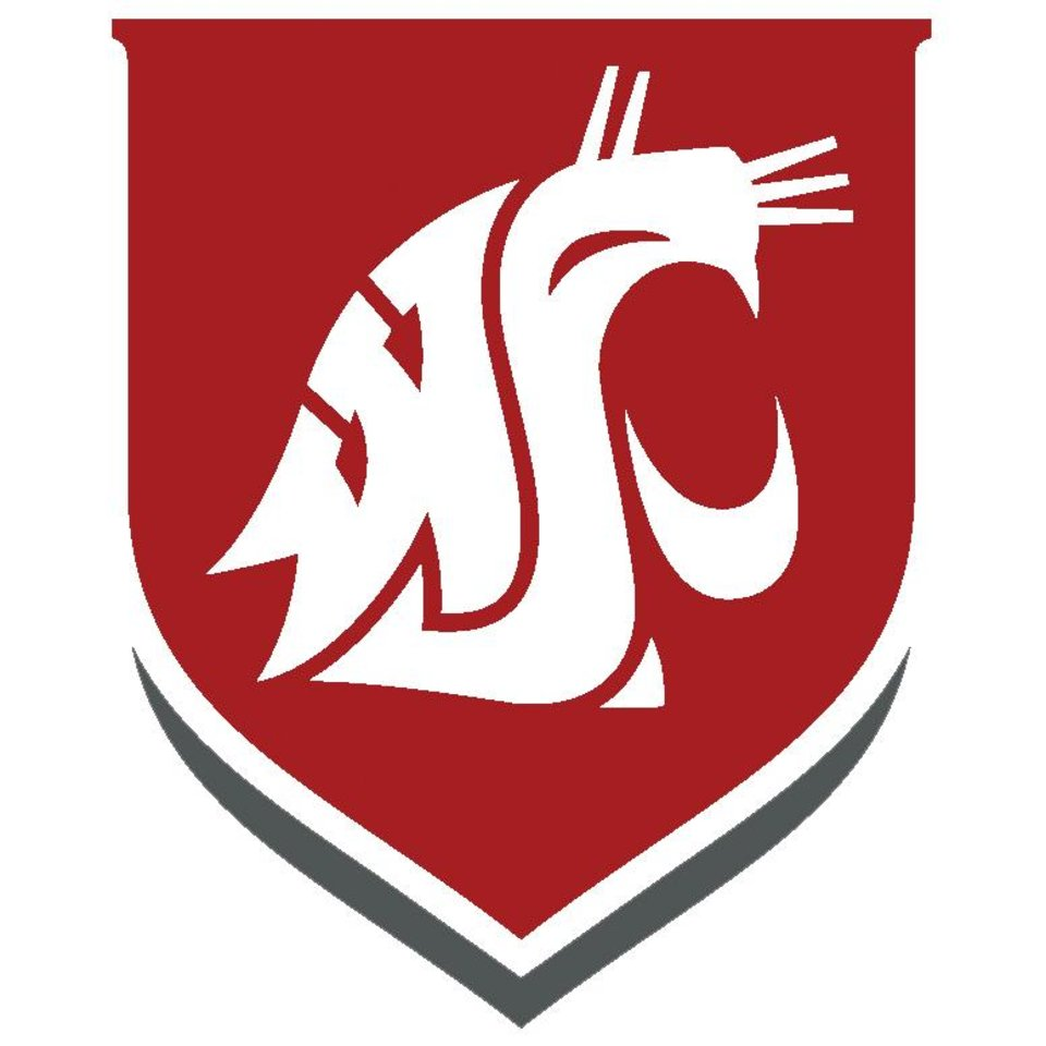 Photo - WASHINGTON STATE UNIVERSITY / WSU / GRAPHIC / LOGO / BUTTON / BUG
