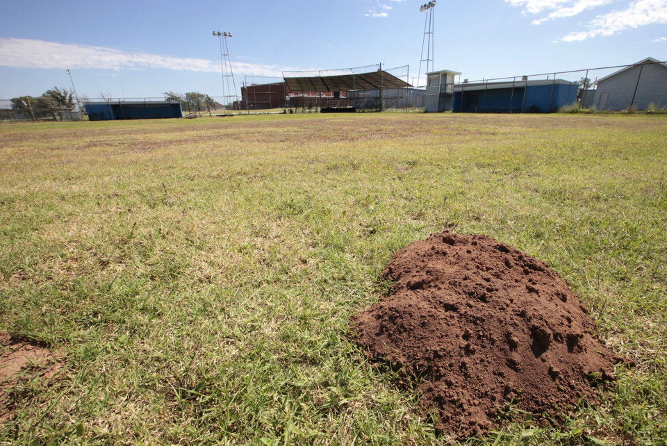 Photo - This gopher mound is shown on the Taloga High School baseball field. This is where Jordy Mercer of the Pittsburgh Pirates played for the Panthers. The high school no longer has baseball. PHOTO BY DAVID MCDANIEL, THE OKLAHOMAN   David McDaniel - The Oklahoman