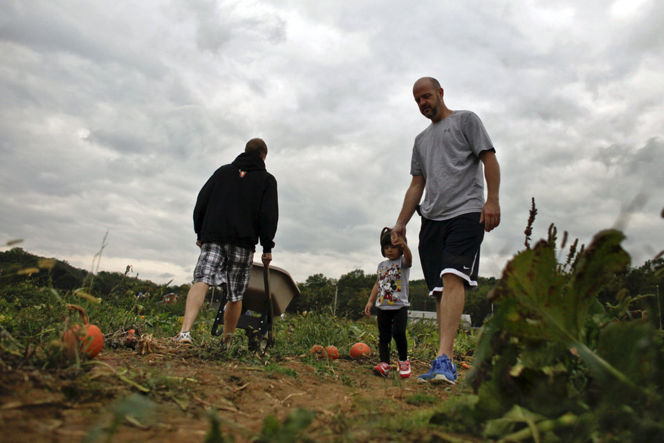 Photo -   Michael Juhas, right, walks with his daughter Sophia, 2, through a pumpkin patch Saturday Oct. 6, 2012, in Buckingham Pa. Juhas, a Democrat, is scared of the potential for more cuts in subsidized student programs under Romney, while Juha's wife, Christine, a Republican said she was swept up by President Obama's oratory and style when she voted for him in 2008, but she doesn't think he has delivered on his promise of change. (AP Photo/ Joseph Kaczmarek)