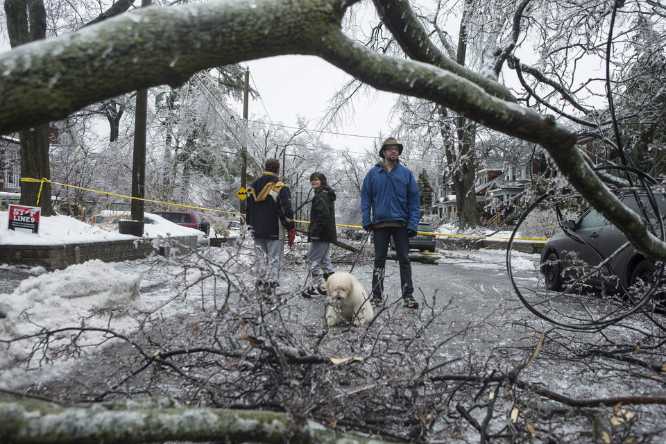 Photo - Residents survey the damage after power lines came down across a street in Toronto's east end on Sunday, Dec. 22 2013. (AP Photo/The Canadian Press, Chris Young)