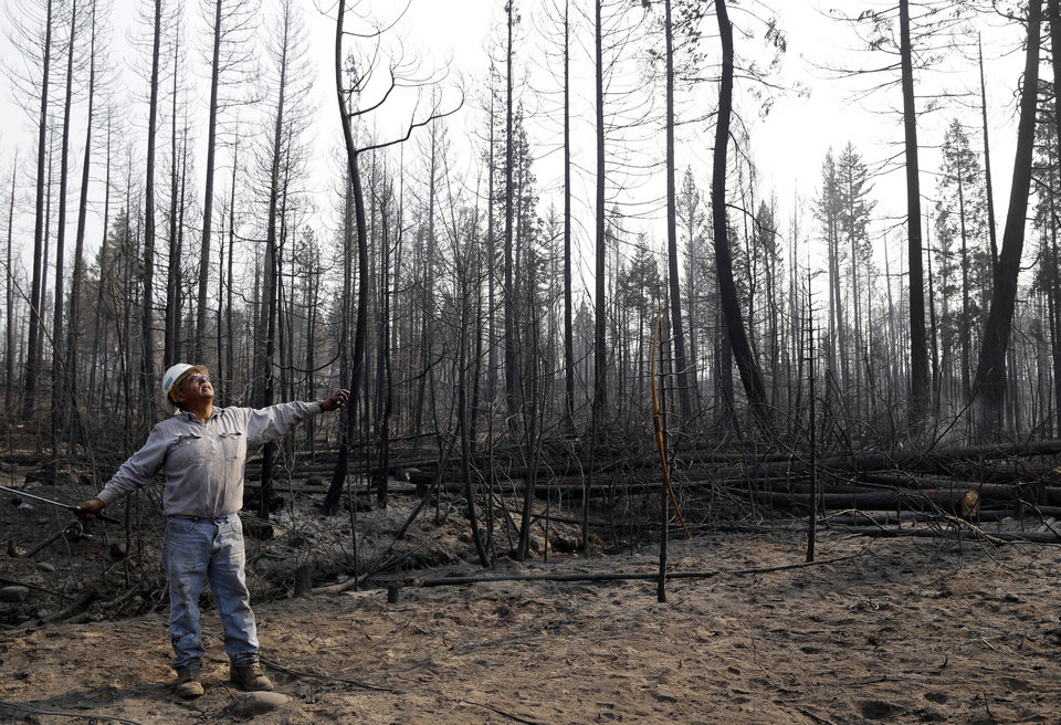 Juan Flores stands in the middle of a burned out forest as he chops down trees in Manton, Calif., Friday, Aug.  24, 2012. Residents of the tiny mountain town of Mineral, Calif., breathed easier Friday after air tankers and helicopters blunted the run of a massive wildfire in Northern California just outside Lassen Volcanic National Park. Sixty-four homes and 20 other buildings have been destroyed, mostly in the Manton area, since lightning ignited the blaze Saturday. AP photo