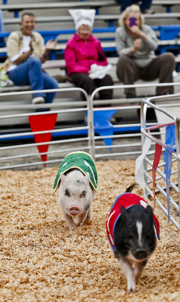 Photo - Fans cheer on the pigs during the pig races at the Oklahoma State Fair at State Fair Park on Friday, Sept. 14, 2012, in Oklahoma City, Oklahoma.  Photo by Chris Landsberger, The Oklahoman