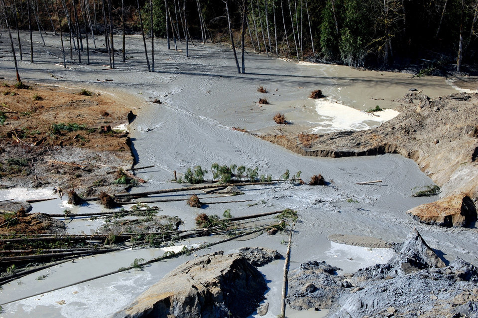 Photo - This March 23, 2014 photo, made available by the Washington State Dept of Transportation shows a view of the damage from Saturday's mudslide near Oso, Wash. At least eight people were killed in the 1-square-mile slide that hit in a rural area about 55 miles northeast of Seattle on Saturday. Several people also were critically injured, and about 30 homes were destroyed. (AP Photo/Washington State Dept of Transportation)