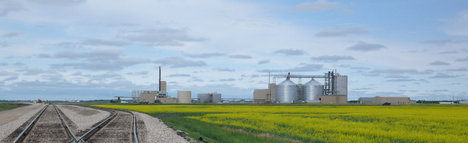 Northstar Agri Industries canola refinery plant is shown in Hallock, Minn., amid a field of canola. PHOTO PROVIDED <strong></strong>