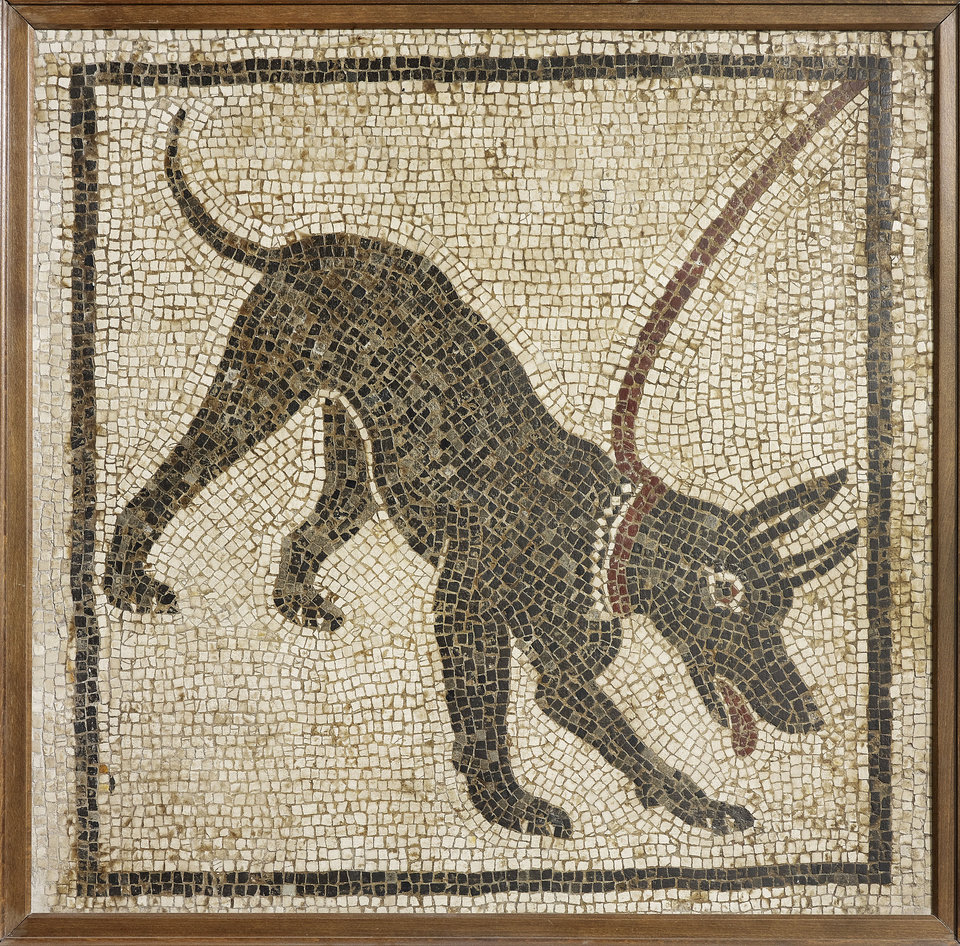 Photo -   Undated handout photo issued by the British Musuem Thursday Sept. 20, 2012 of a mosaic of a guard dog from the House of Orpheus, Pompeii, 1st century AD, Italy as dozens of objects recovered from the ruins of Roman cities Pompeii and Herculaneum will go on show outside Italy for the first time at a new exhibition at the museum. The two cities on the Bay of Naples were wiped out by the eruption of Mount Vesuvius in 79 AD. The show will feature objects found in their ruins including jewellery, carbonised food and a baby's crib that still rocks on its curved runners. The exhibition will run March 28 to Sept. 29, 2013. (AP Photo/The Trustees of the British Museum)
