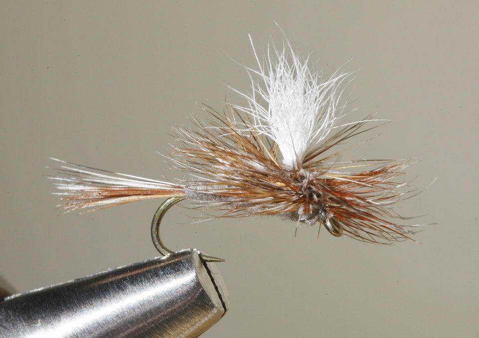 Six Fishing Flies Every Oklahoma Fly Angler Should Carry
