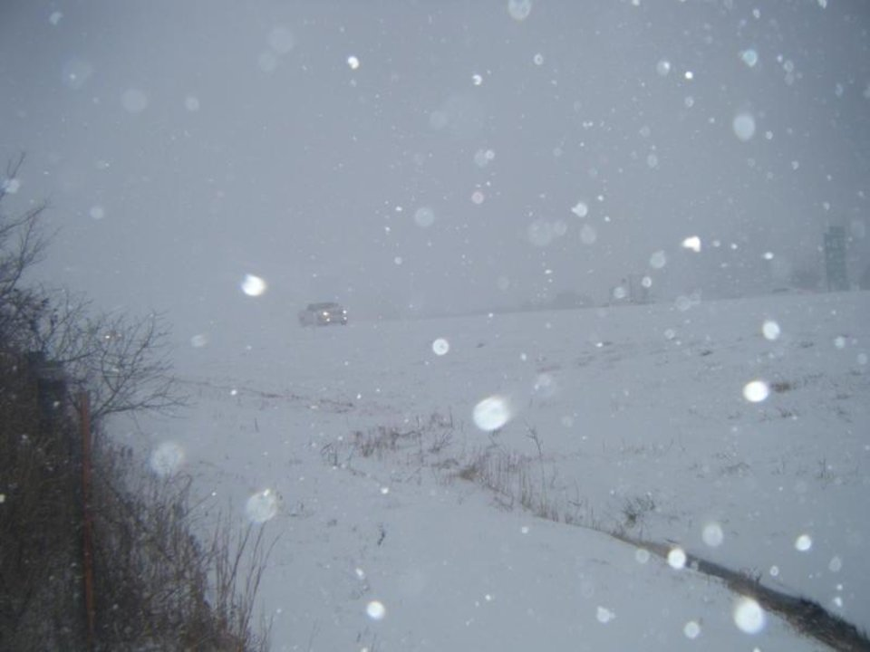 Photos submitted by Joan Bratcher near Davis.