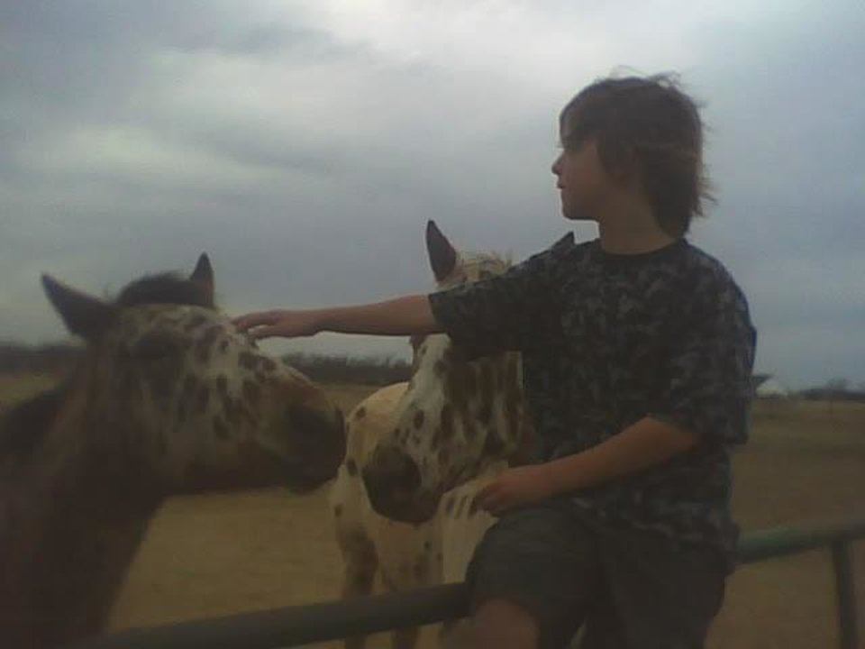 kash with horses.<br/><b>Community Photo By:</b> Tama<br/><b>Submitted By:</b> Tama, Midwest