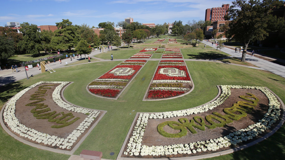 Photo - More than 15,000 mums and 5,000 little Joseph's coat plants were used in this year's design   on the University of Oklahoma's South Oval .  Photo by David McDaniel, The Oklahoman  David McDaniel -  The Oklahoman