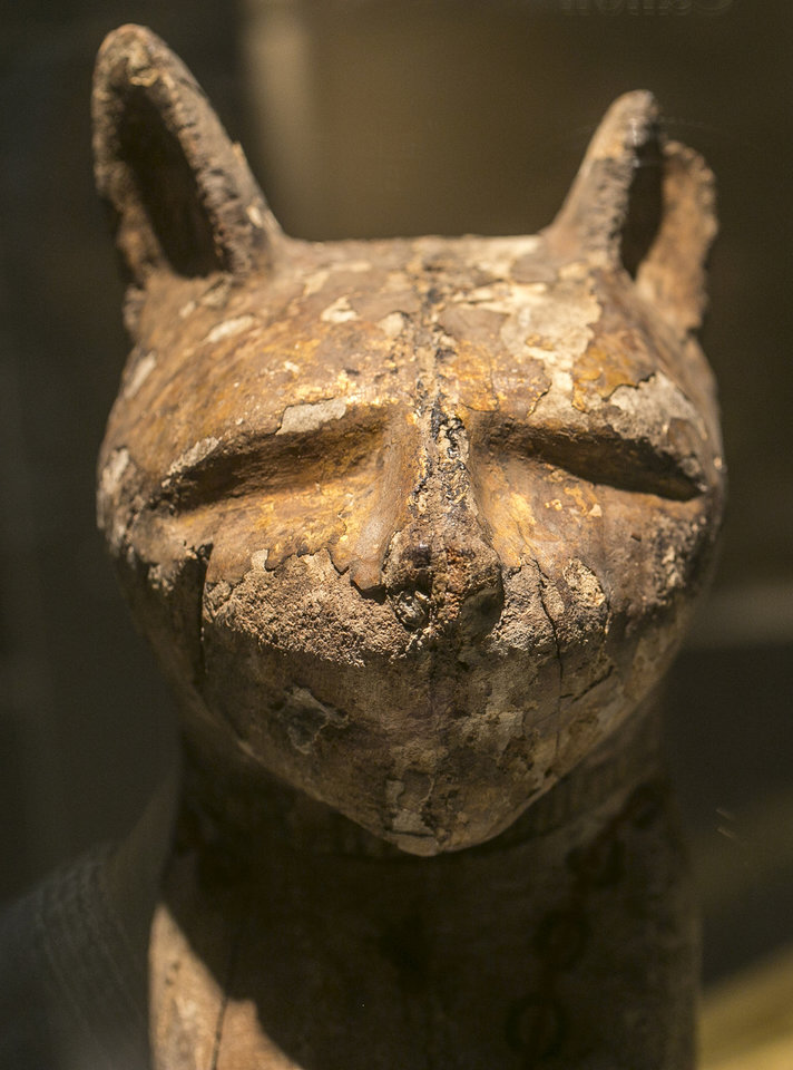Photo - In this March 20, 2014 photo, a cat coffin with mummy, is displayed as part of the exhibit