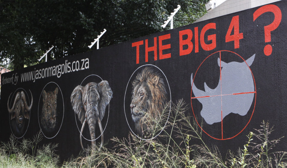 A mural painted on a suburban wall in Johannesburg, South Africa calls for the halt to rhino poaching, Friday, Dec. 18, 2013 in a bid to save the species from extinction due to killings for the rhinos horn. Veterinarians are racing to learn more about rhino anatomy so they can swiftly treat survivors of attacks by poachers whose arsenal has included assault rifles, high-caliber weapons that can fell a rhino with a single shot and drug-tipped darts that knock it out. The big five game animals referred to in the mural as the