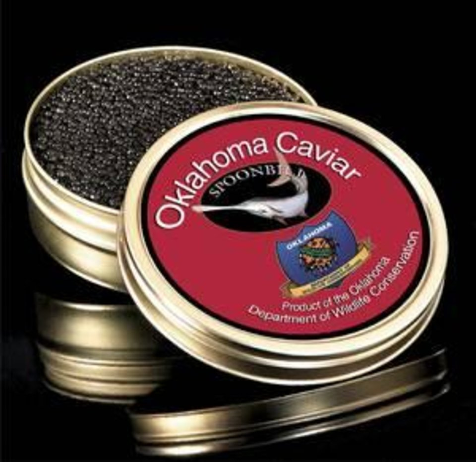 Photo -  A photo illustration of how a can of Oklahoma-made spoonbill caviar might look. The Oklahoma Department of Wildlife Conservation sells it caviar to a wholesaler and not directly to the public.
