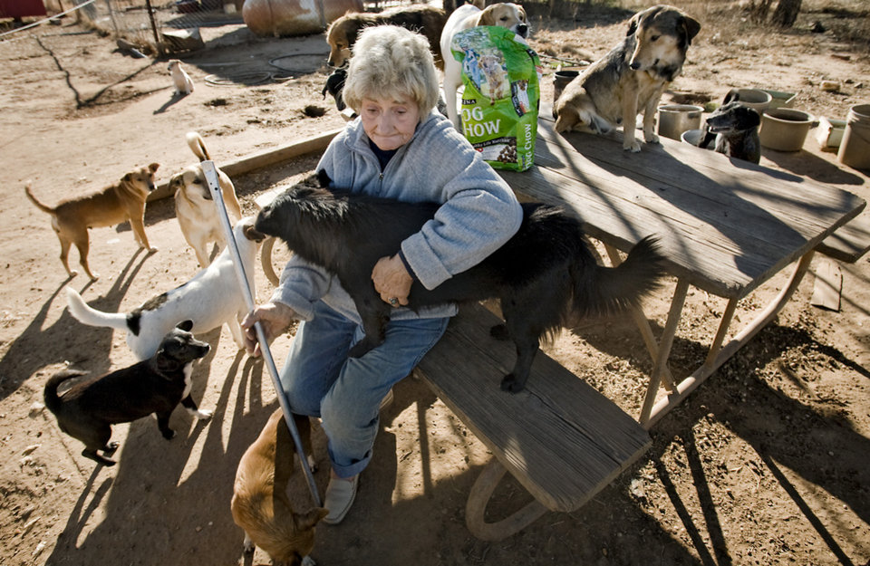Photo - Catherine Titus sits with a mere few of the 100 plus dogs she care for on Tuesday, Dec. 30, 2008, in Wilson, Okla. Titus who live out of a broken down van with no running water or electricity spends most all of her monthly $700 Social Security check to care for the dogs she calls her best friends.  Titus makes sure the dogs are fed twice a day, and are also given dog treats as a little something extra.