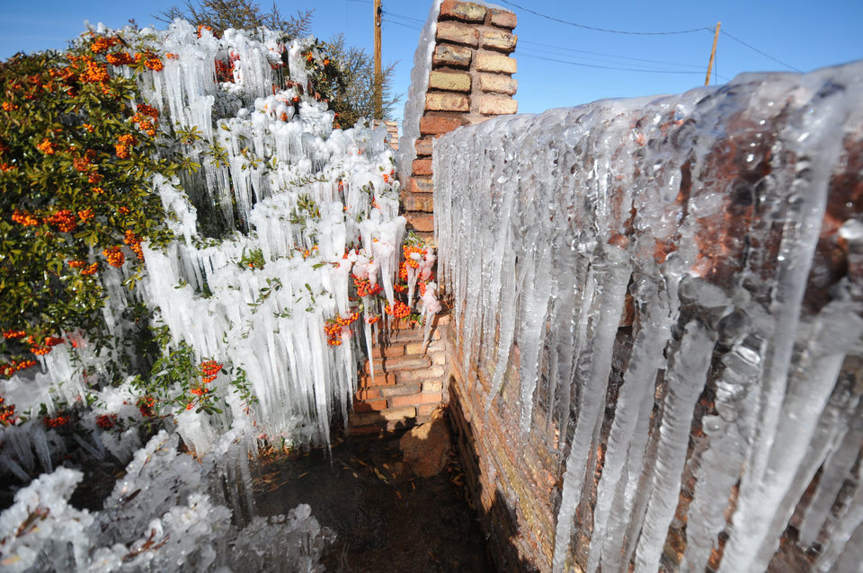 Photo - Icicles develop along a brick wall and on bushes as water from the sprinkler system freezes at a home on the corner of Willow Street and Peach Avenue in Hesperia, Calif, on Monday, Jan. 14, 2012. The extreme chill in the West comes as the eastern U.S., from Atlanta to New York City, is seeing spring-like weather. (AP Photo/The Victor Valley Daily Press, David Pardo)