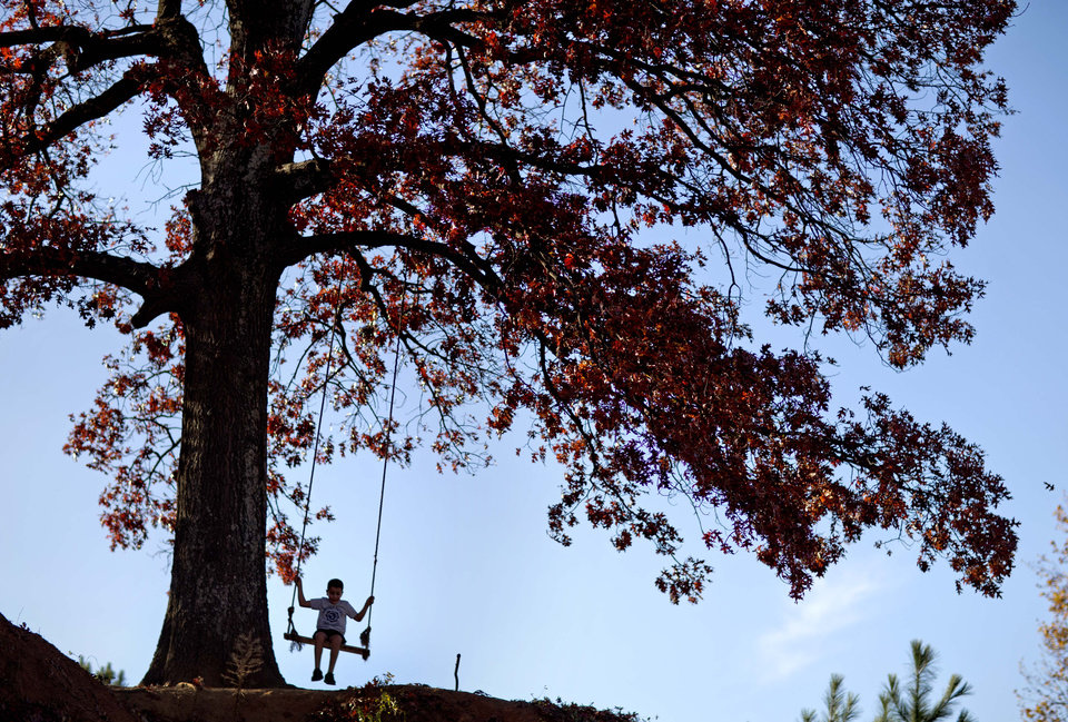 Photo -   In this Nov. 20, 2012 photo, a child swings from a tree atop a hill along the Atlanta BeltLine in Atlanta. Since an Atlanta nonprofit opened a 2.25-mile-long paved trail east of downtown last month, it has attracted a steady stream of joggers, dog-walkers and cyclists to take in spectacular views of the skyline as well as a slice of established neighborhoods that were once only seen by riding a freight train. The Eastside Trail is the latest and most visible phase of the Atlanta BeltLine, an ambitious $2.8 billion plan to transform a 22-mile railroad corridor that encircles Atlanta into a network of parks, trails, public art, affordable homes and ultimately streetcars. (AP Photo/David Goldman)