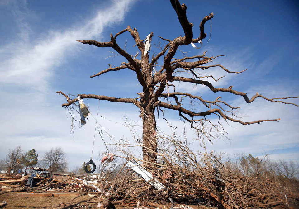 A large oak tree is seen damaged in the Majestic Hills neighborhood north of Ardmore on Thursday.  PHOTO BY SARAH PHIPPS, THE OKLAHOMAN