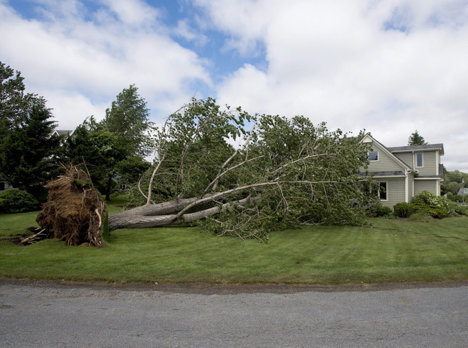 Photo - A large uprooted tree rests against a house in Oakland, Nova Scotia on Saturday, July 5, 2014. Thousands of homes and businesses were without power as heavy rains and high winds buffeted the region.(AP Photo/The Canadian Press, Andrew Vaughan)