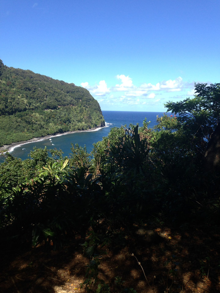 Photo -  An overlook taken during a drive on the Road to Hana in Maui, Hawaii.    -  Mi-Ling Stone Poole