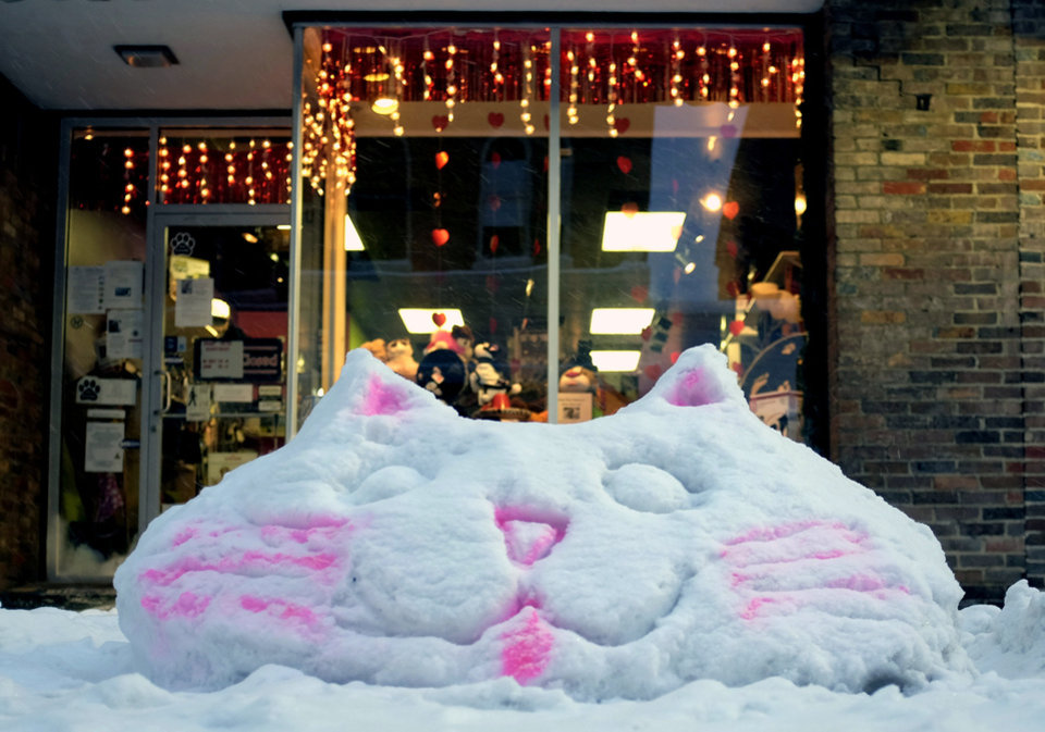 Photo - A snow sculpture of a cat greets shoppers at the Posh Pets Salon in Winchester, Va. during a snow storm Tuesday, Jan. 21, 2014.  (AP Photo/The Winchester Star, Scott Mason)