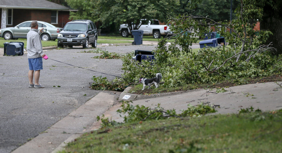 Photo - A man takes a picture of trees down and knocked over trash cans while walking a dog along Mattern Dr. in northwest Oklahoma City after thunderstorms hit the metro area, in Oklahoma City, Tuesday, Aug. 27, 2019. [Nate Billings/The Oklahoman]