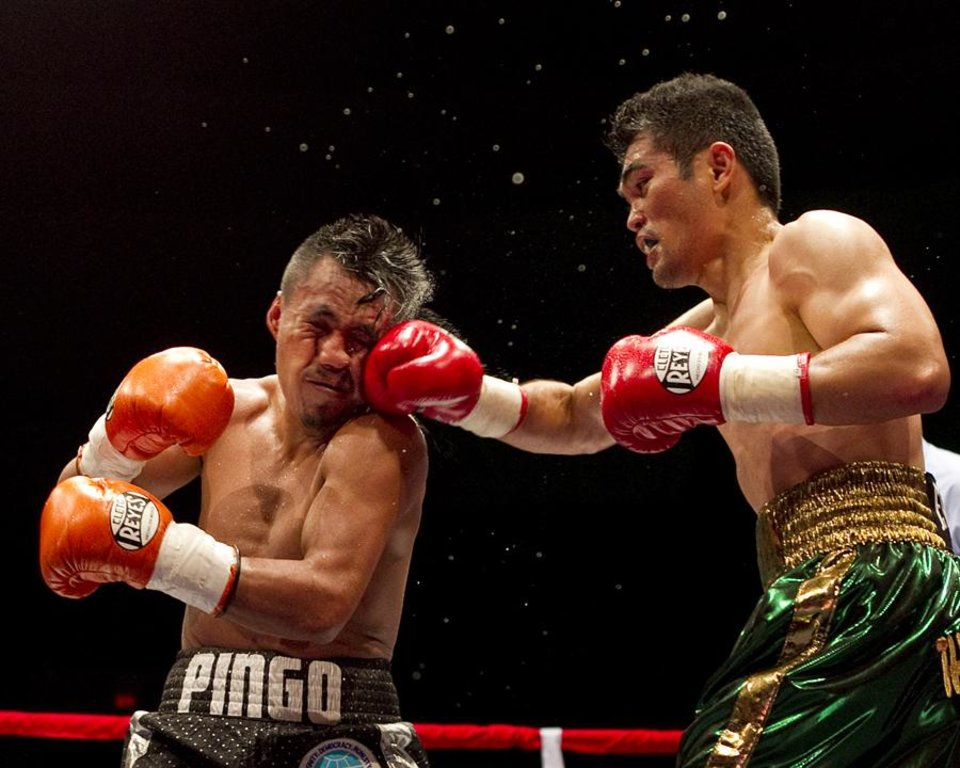 Brian Viloria, of Waipahu, Hawaii, right, lands a punch against WBO flyweight title holder Julio Cesar Miranda, of Mexico, in the 3rd round,  Saturday, July 16, 2011, in Honolulu.  Viloria defeated Miranda after 12 rounds.  (AP Photo/Marco Garcia)