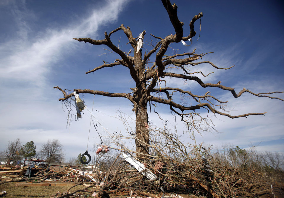 Photo - TORNADO DAMAGE: A large oak tree is seen damaged in the Majestic Hills neighborhood north of Ardmore, Thursday, Feb. 12, 2009, PHOTO BY SARAH PHIPPS, THE OKLAHOMAN ORG XMIT: KOD