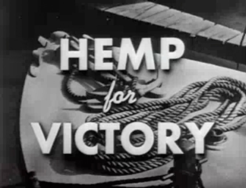 "FILE- This file image made from a film produced by the U.S. Department of Agriculture during World War II shows the title frame of the movie ""Hemp for Victory."" After Japanese troops cut off access to Asian fiber supplies during the war, it released the propaganda film urging farmers to grow hemp and extolling its use in parachutes and rope for the war effort. On the occasion of  �Legalization Day,� Thursday, Dec. 6, 2012, when Washington�s new law takes effect, AP takes a look back at the cultural and legal status of the �evil weed� in American history. (AP Photo/U.S. Department of Agriculture, File)"