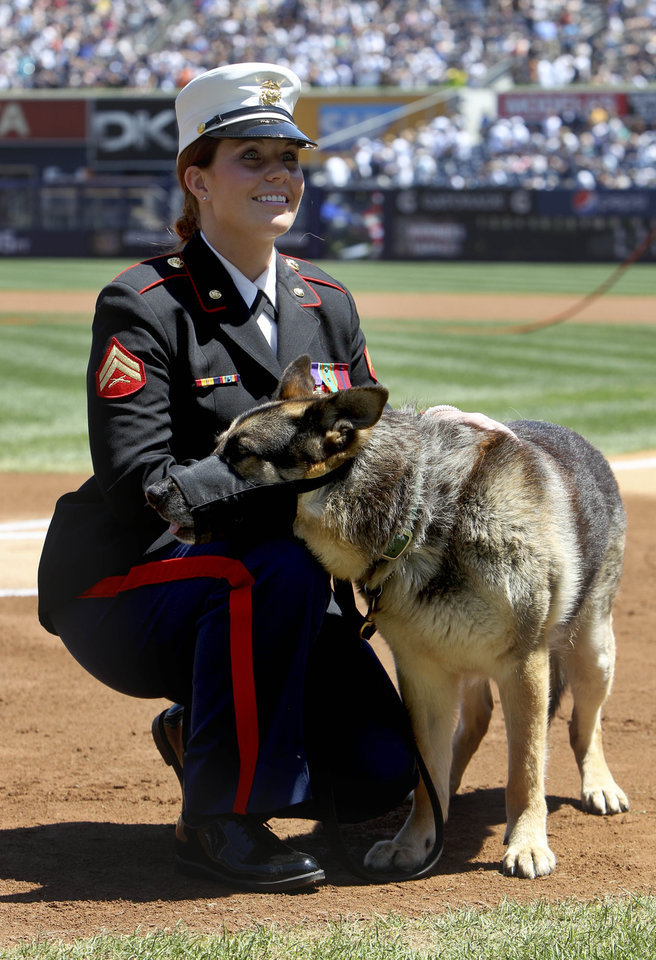Photo -   Former Marine Cpl. and Purple Heart recipient Megan Leavey and combat dog Sgt. Rex participate in a ceremony before a baseball game between the New York Yankees and the Seattle Mariners at Yankee Stadium in New York, Sunday, May 13, 2012. Through two tours of duty in Iraq, Sgt. Rex was by Leavey's side. The pair worked more than 100 missions searching for roadside bombs, were injured in the line of duty and went through physical therapy together. After five years of waiting for Rex's service to end and filling out paperwork, Leavey finally won approval to bring the 11-year-old German Shepherd home. (AP Photo/Seth Wenig)