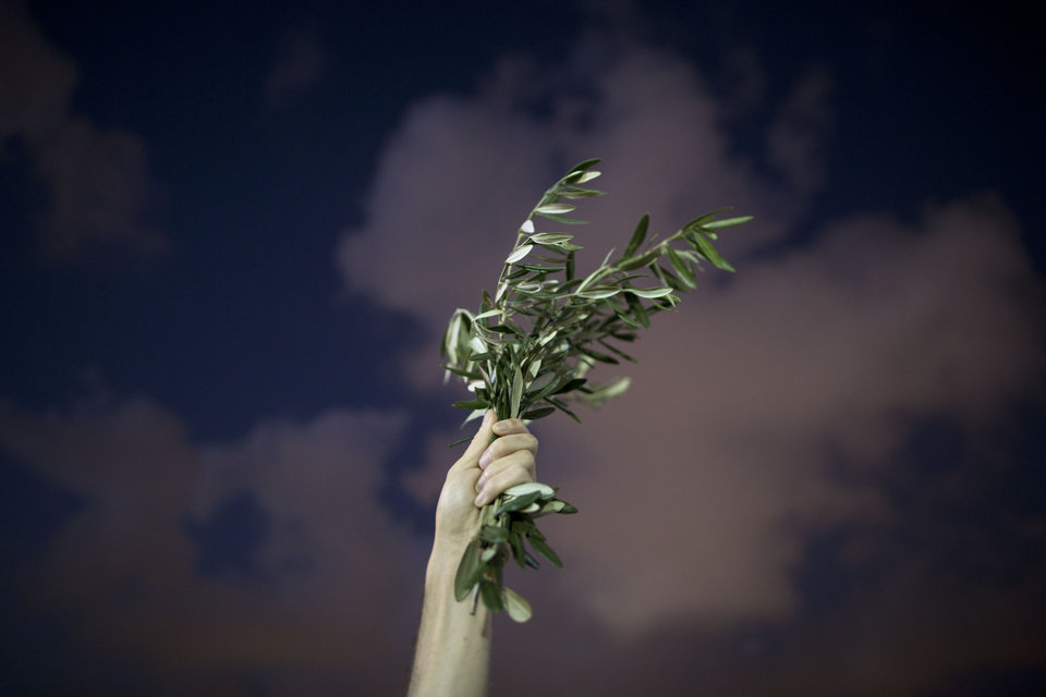 Photo - An Israeli left wing activist holds olive branches,  during a demonstration against Israel's offensive in the Gaza Strip, in Tel Aviv, Israel, Saturday, July 19, 2014. Israeli bulldozers demolished more than a dozen tunnels Saturday in the Gaza Strip, and Palestinian authorities reported intensified airstrikes and shelling as the death toll from Israel's ground offensive rose to at least 342 Palestinians. Diplomats struggled to revive a cease-fire. (AP Photo/Oded Balilty)