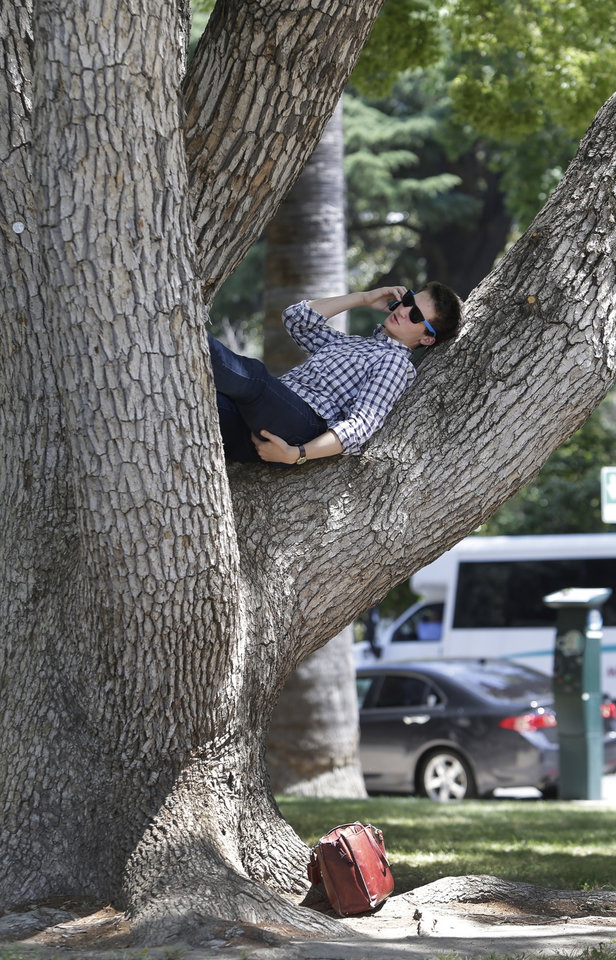 Photo - Quinn Kobelak, 20, of Pittsburgh, Pennsylvania, found a shady spot, in a tree, to make a call outside the state Treasury Building while visiting Sacramento, Calif., Tuesday, May 13, 2014. Temperatures for the day are expected to reach the mid-90's and expected to reach record high temperatures later in the week.(AP Photo/)