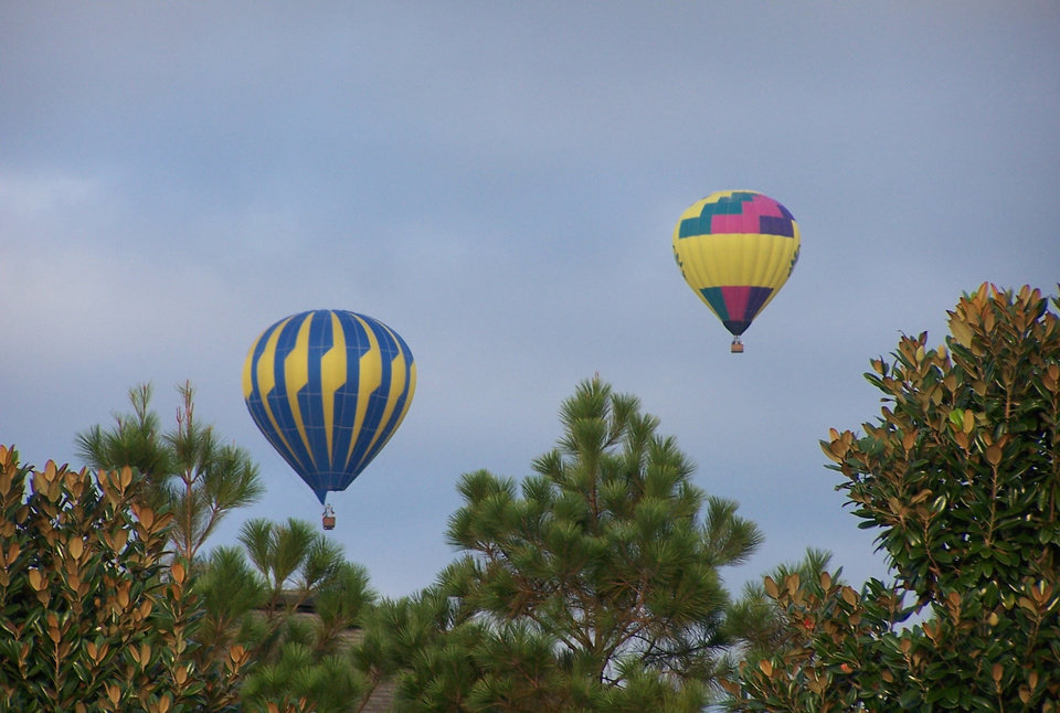 Hot air balloons rise above the trees early one August morning in Davenport, Florida. Community Photo By: Cindi Tennison Submitted By: Cindi , Bethany