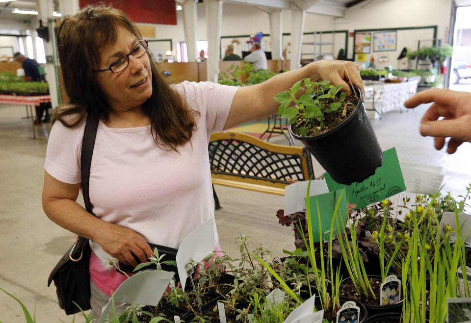 Annie Potts looks at plants for sale Wednesday at the Norman Farm Market.