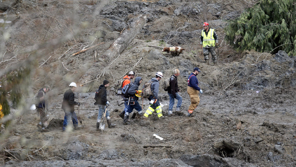 Photo - Searchers walk into the scene of a deadly mudslide that covers the road, Wednesday, March 26, 2014, in Oso, Wash. Sixteen bodies have been recovered, but authorities believe at least 24 people were killed. And scores of others are still unaccounted for, although many of those names were believed to be duplicates or people who escaped safely. (AP Photo/Rick Wilking, Pool)