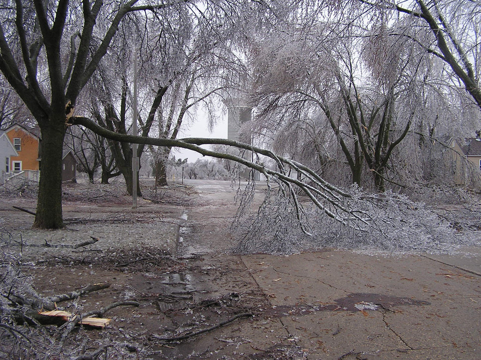 Photo - An ice storm brought down hundreds of tree limbs in Worthington in southwest Minnesota on Wednesday, April 10, 2013. (AP Photo/Minnesota Public Radio, Mark Steil)