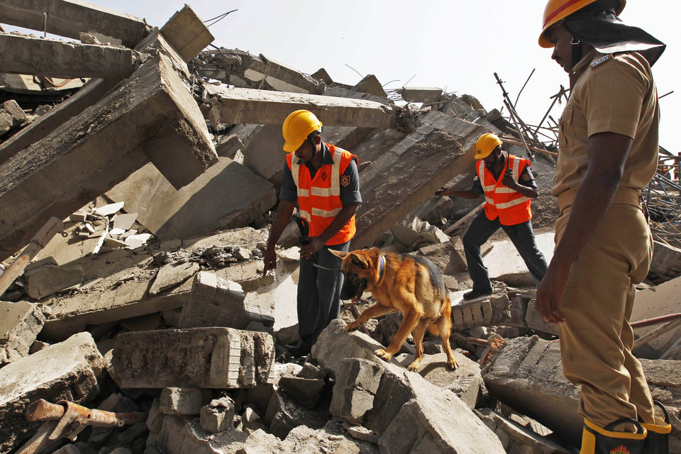 Photo - Rescuers with a sniffer dog search for workers believed buried in the rubble of a building that collapsed late Saturday during monsoon rains on the outskirts of Chennai, India, Sunday, June 29, 2014. Police said dozens of workers have been pulled out so far and the search is continuing. (AP Photo/Arun Sankar K)