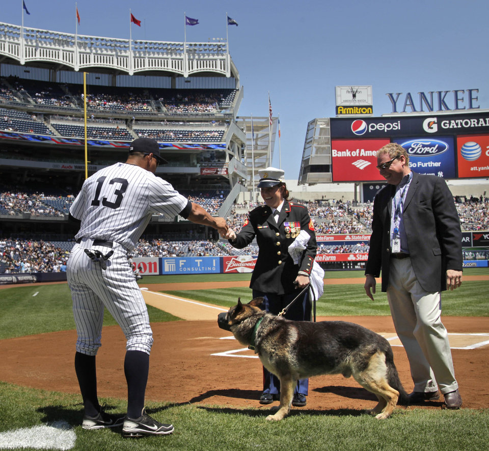 Photo -   New York Yankees' Alex Rodriguez, left, keeps his distance from combat dog Sgt. Rex while greeting former Marine Cpl. and Purple Heart recipient Megan Leavey, center, as Yankees team president Randy Levine, right, looks on during a ceremony before the start of a baseball game against the Seattle Mariners at Yankee Stadium in New York, Sunday, May 13, 2012. Through two tours of duty in Iraq, Sgt. Rex was by Leavey's side. (AP Photo/Seth Wenig)