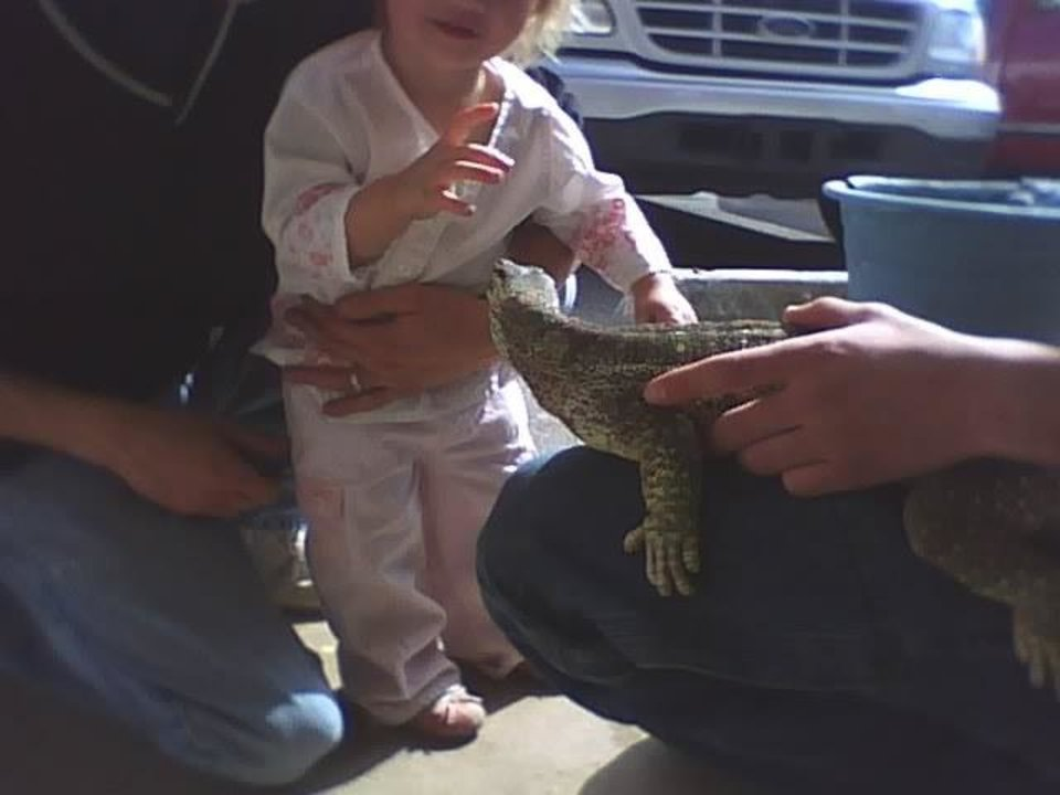 Baby amber wanting to pet Dog<br/><b>Community Photo By:</b> Tama<br/><b>Submitted By:</b> Tama, Midwest