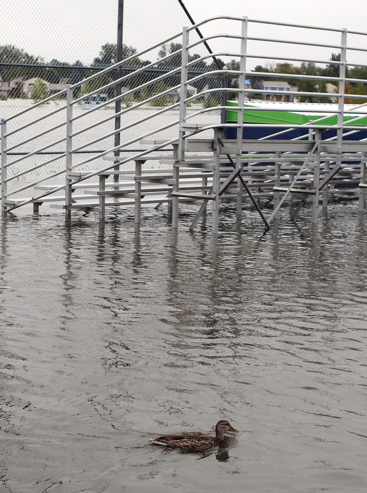 Photo - A duck swims near bleachers at Utah Park on Thursday, Sept. 12, 2013, in Aurora, Colo. The park was under water Thursday due to flooding. Flash flooding in Colorado has cut off access to towns, closed the University of Colorado in Boulder and left at least three people dead.(AP Photo/Ed Andrieski)