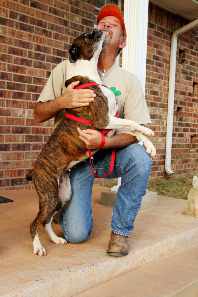 Free to Live Animal Sanctuary kennel master Willy Fields gets a kiss from Jasmine, an 8-year-old boxer he found wandering in Logan County. The dog will be reunited with its owners in North Dakota on Tuesday. Photo by Matt Patterson, The Oklahoman <strong></strong>