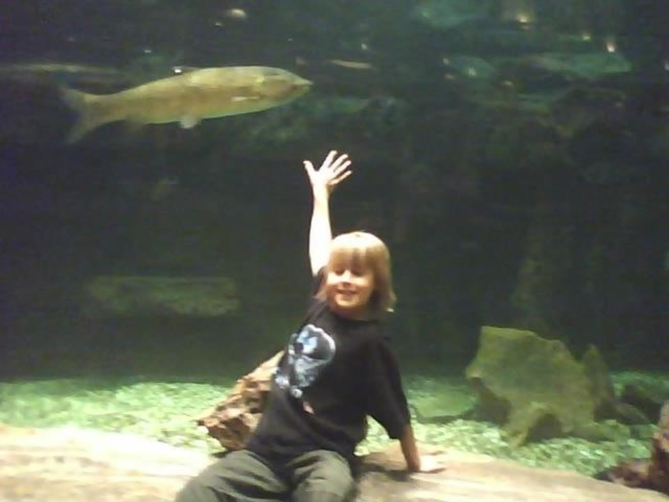 Fish at Bass PRo shop kash<br/><b>Community Photo By:</b> Tama<br/><b>Submitted By:</b> Tama, Midwest