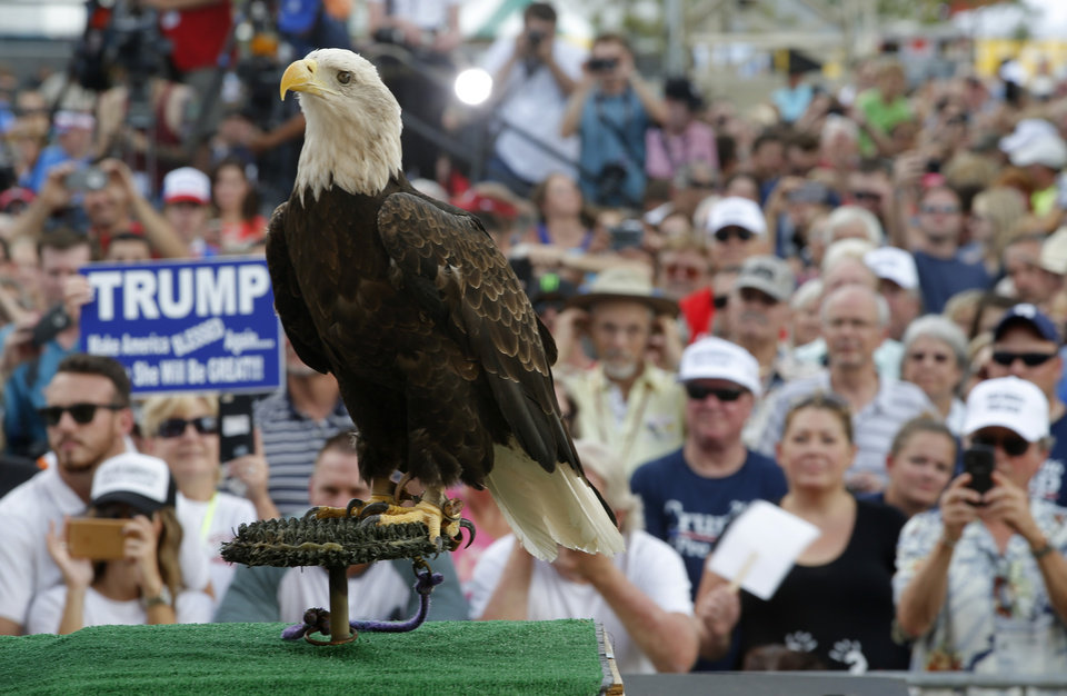 Photo - A bald eagle names Uncle Sam stands on stage before a rally for Republican presidential candidate Donald Trump at the Oklahoma State Fair in Oklahoma City, Friday, September 25, 2015. Photo by Bryan Terry, The Oklahoman
