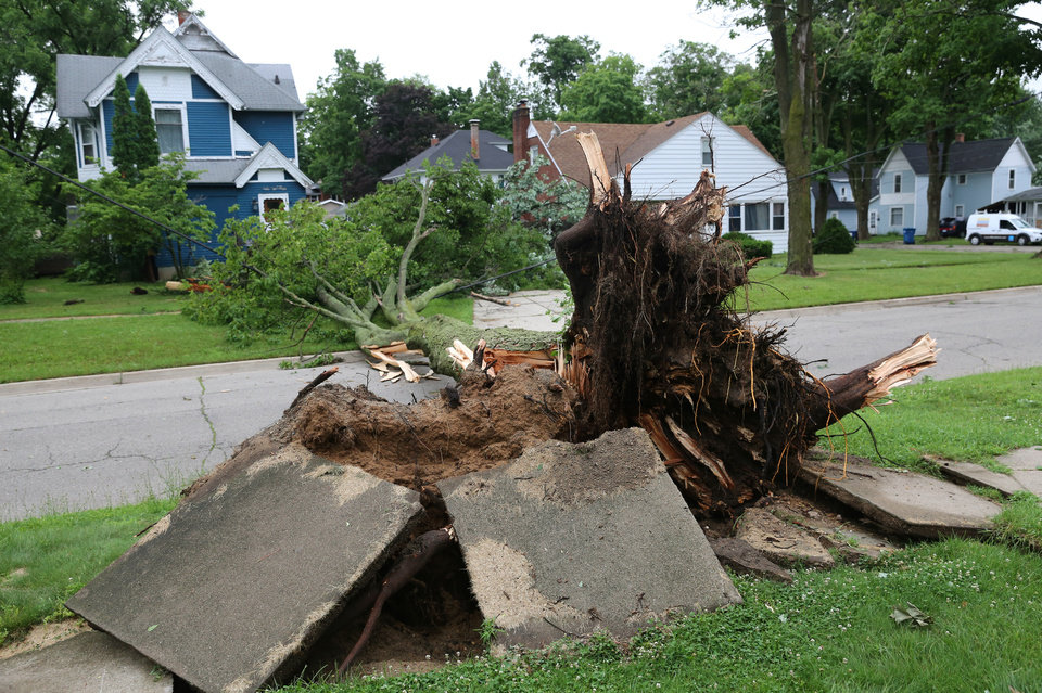 Photo - An uprooted tree lies across the road after a storm in Vicksburg, Mich., Tuesday, July 1, 2014. Severe thunderstorms packing high winds knocked down trees and power lines across parts of Michigan, leaving more than 230,000 without power and injuring a firefighter. (AP Photo/Kalamazoo Gazette-MLive Media Group, Mark Bugnaski) ALL LOCAL TELEVISION OUT; LOCAL TELEVISION INTERNET OUT